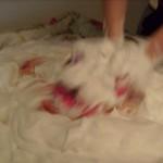 Und Chrischi hat superlange *dankebussi* die Tüte wie einen Hefeteig...